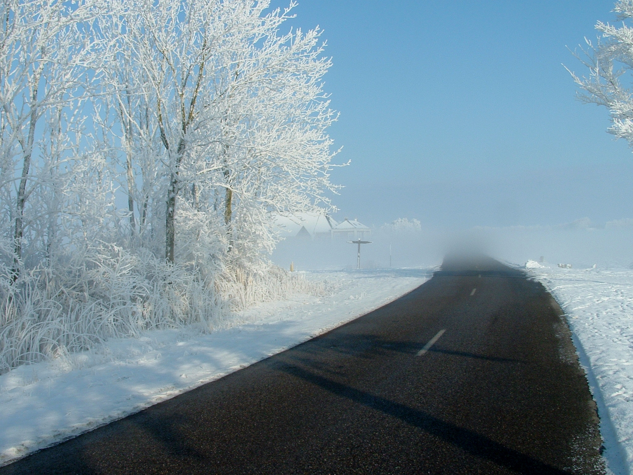 White Out Road